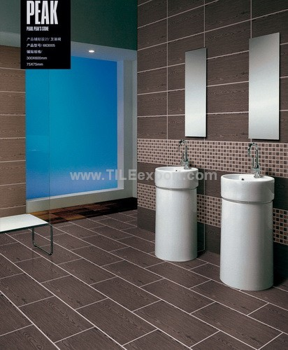Floor_Tile--Porcelain_Tile,600X600mm[GX]